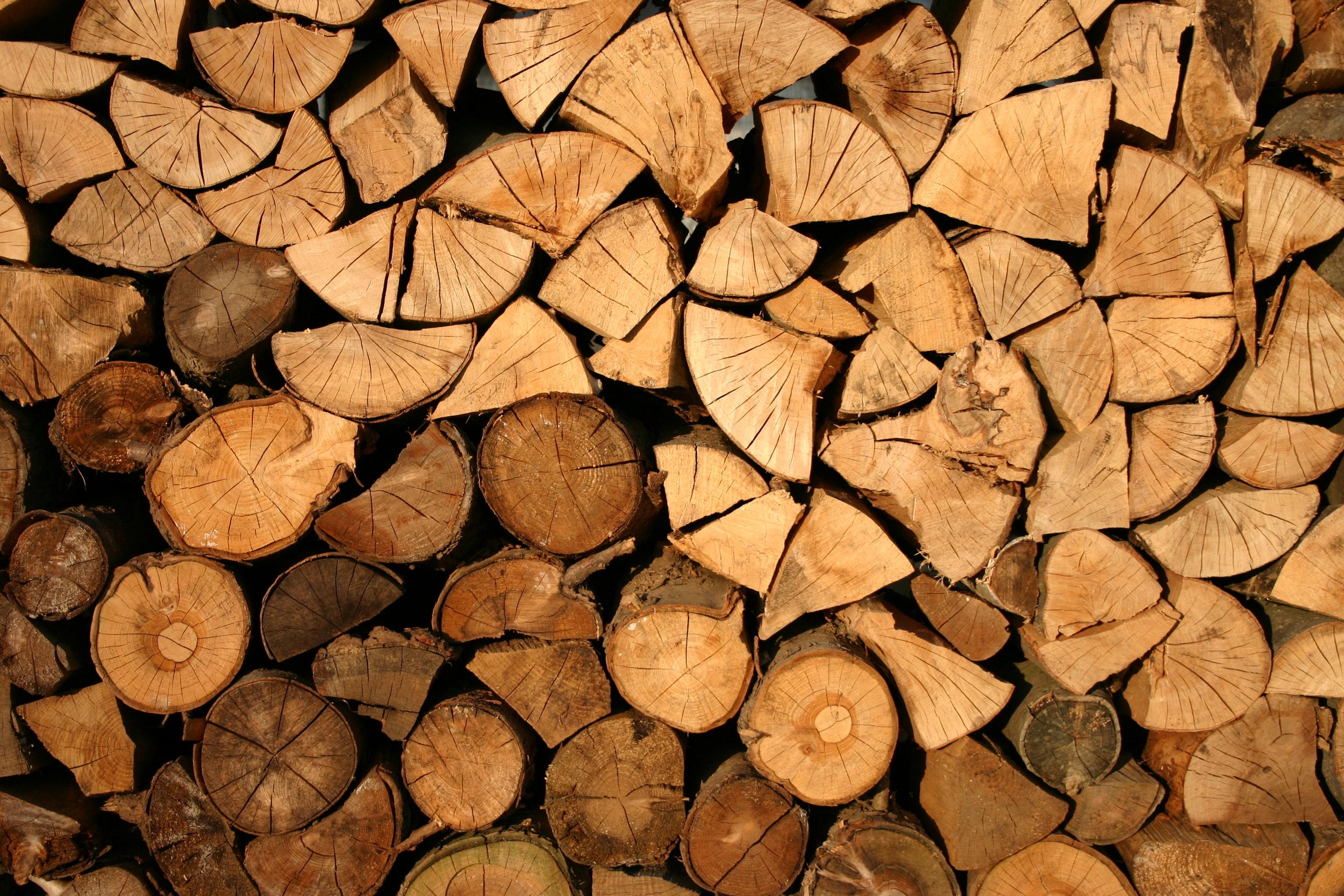 Jak wygląda sytuacja przemysłu drzewnego w Polsce?